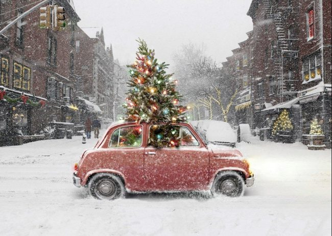 cabriolet Christmas tree